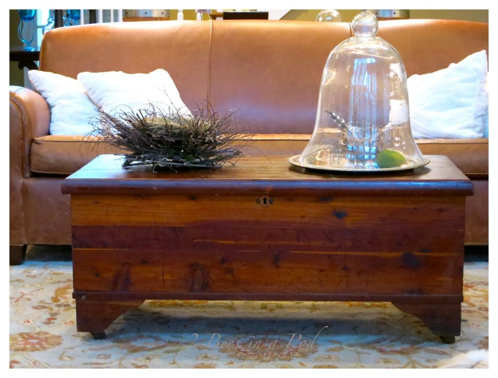 wooden cedar chest creatively used as a coffee table in a stylish living room