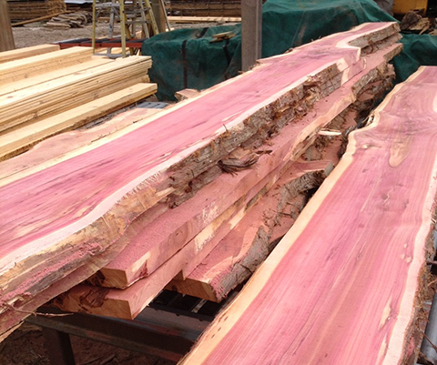 what kind of cedar is used in a cedar chest